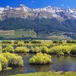 Les randonneurs sortent de la brousse néo-zélandaise pour se verrouiller et ne peuvent presque pas rentrer