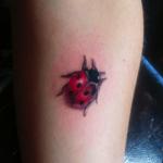 Tatouage de coccinelle: symboles et signification (En images) - TattooList
